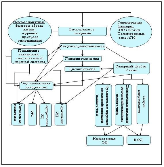 гонадотропин при эректильной дисфункции